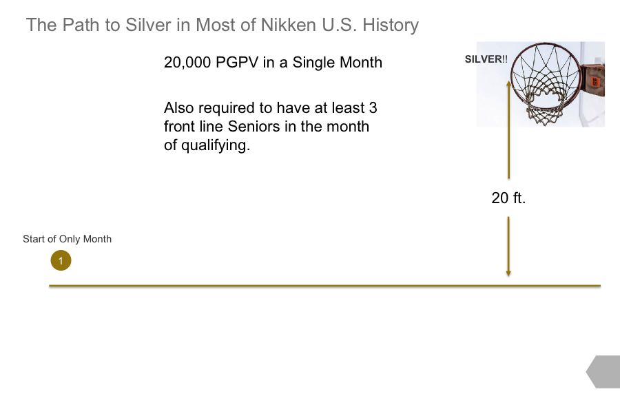 Path to Silver Nikken History